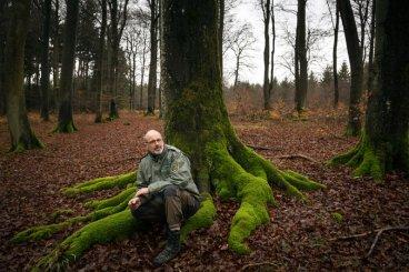 """Résultat de recherche d'images pour """"peter wohlleben la vie secrète des arbres"""""""